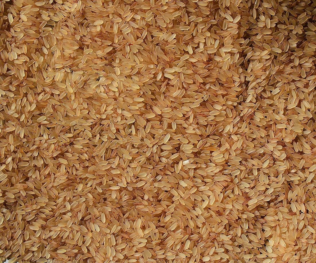 Rice Hd