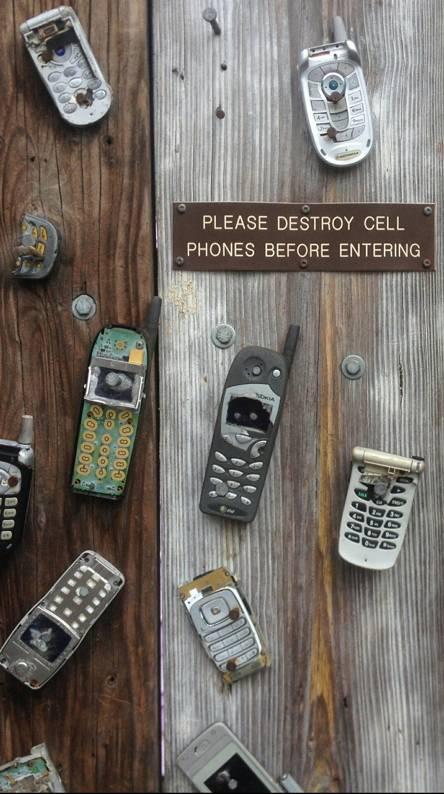 zedge phone number