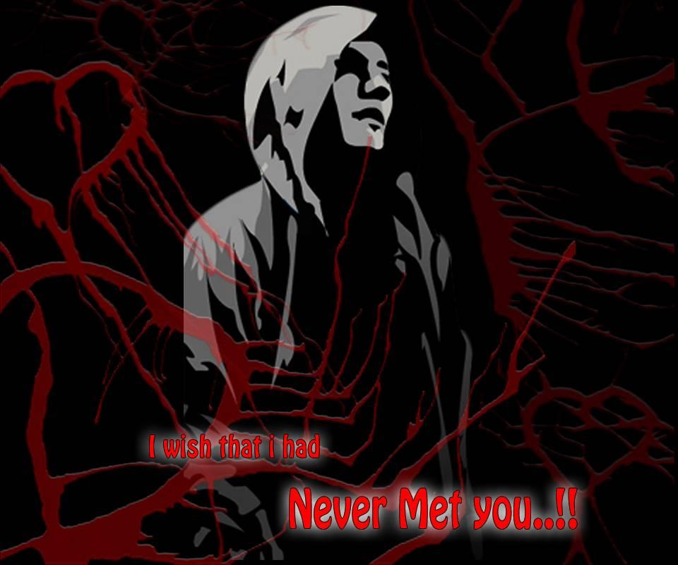 Never Met U In Life