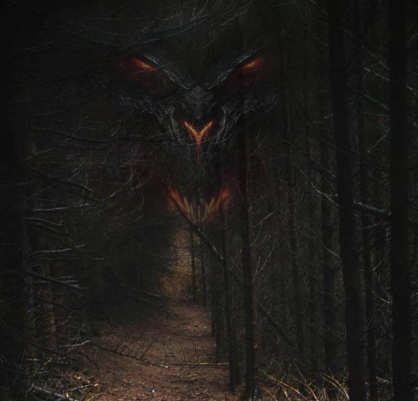 Creepy woods