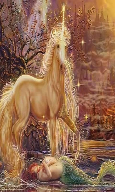 Unicorn And Mermaid