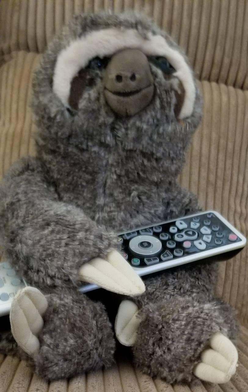 Sloth Asst