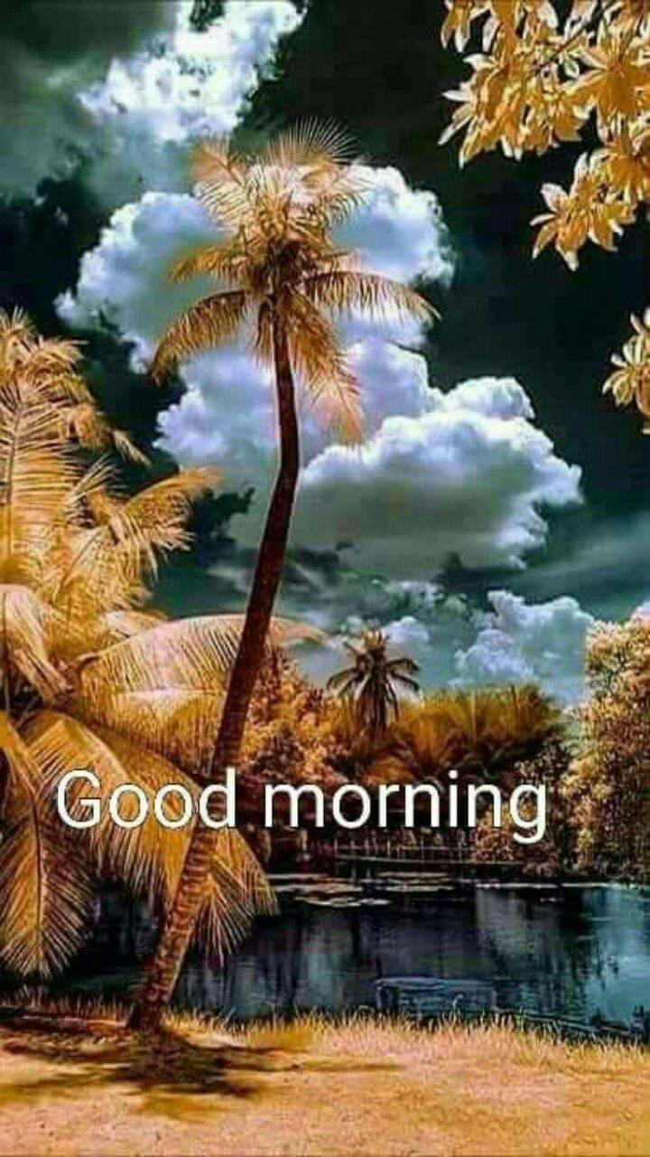 Good Morning Nature wallpaper by RabinDas76 - 41 - Free on