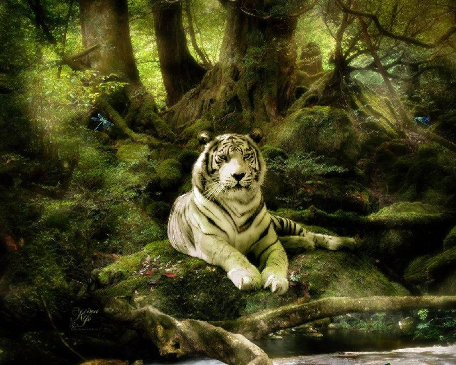 jungle white tiger