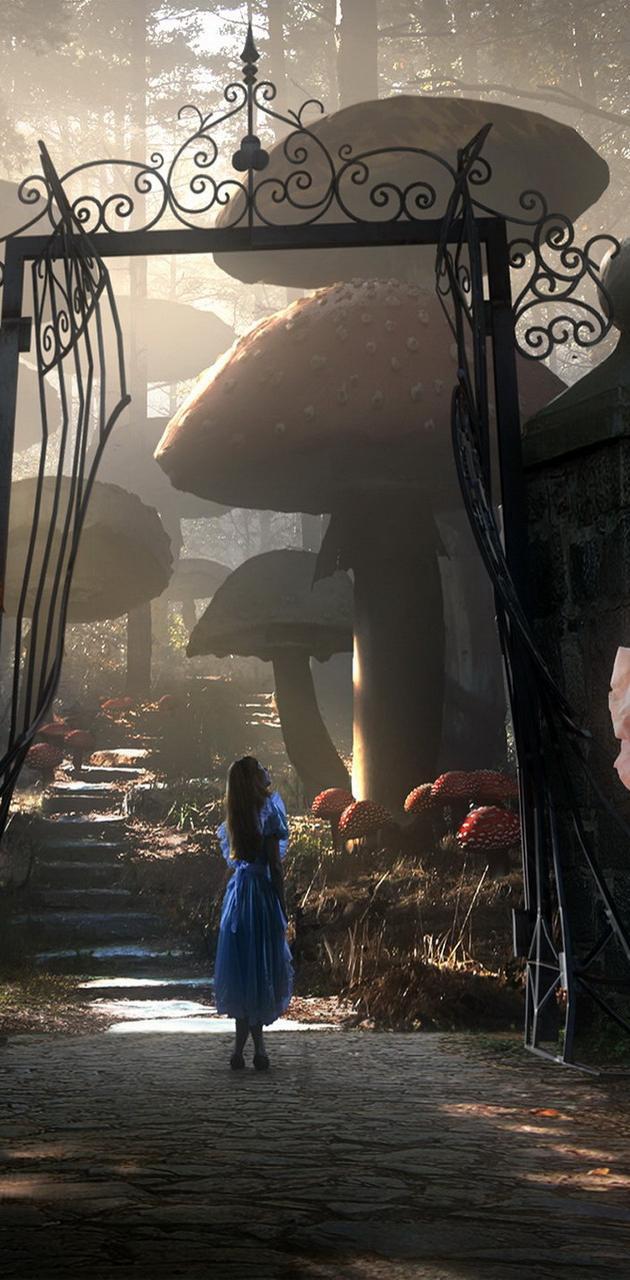 Wonderland Movies