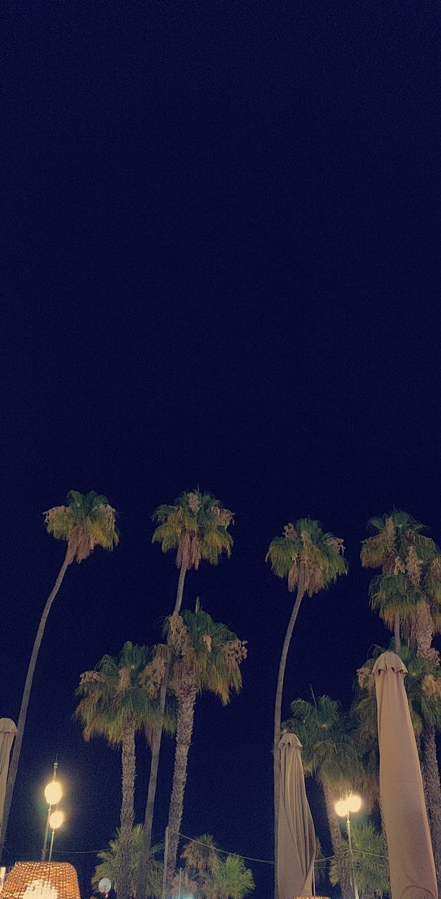 Larnaka Night