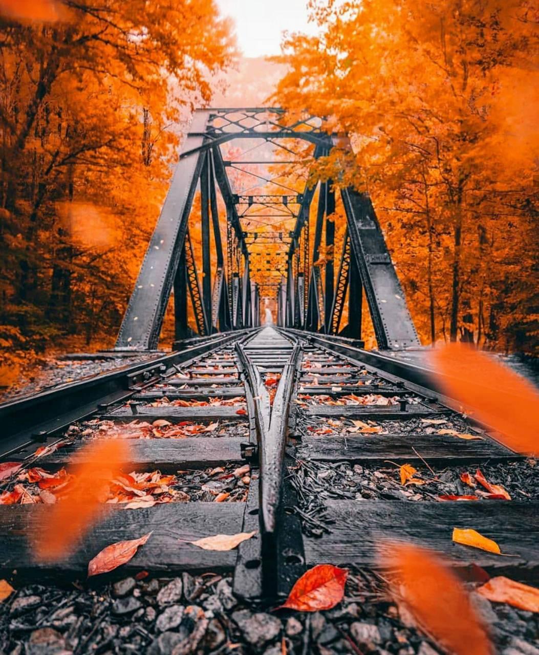 Autumn railroads