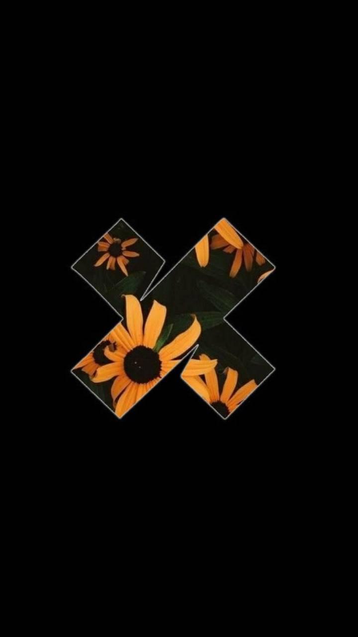 XPLR Flower