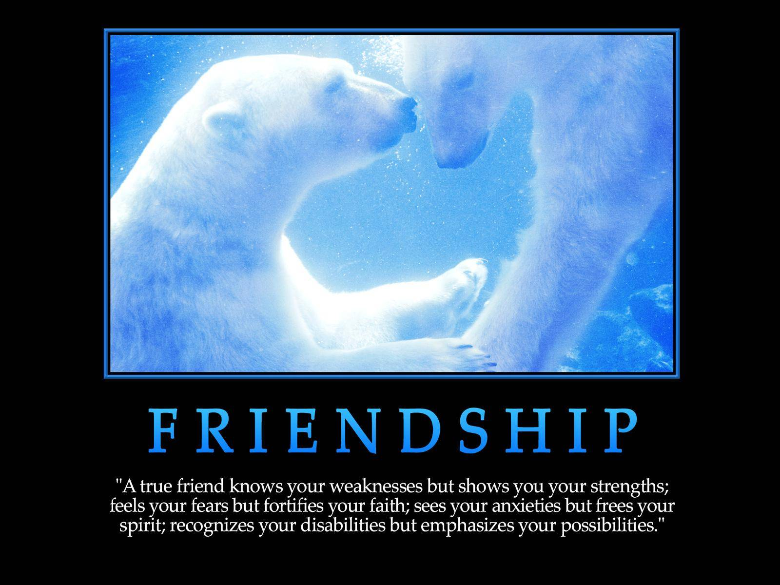 Vz Friendship
