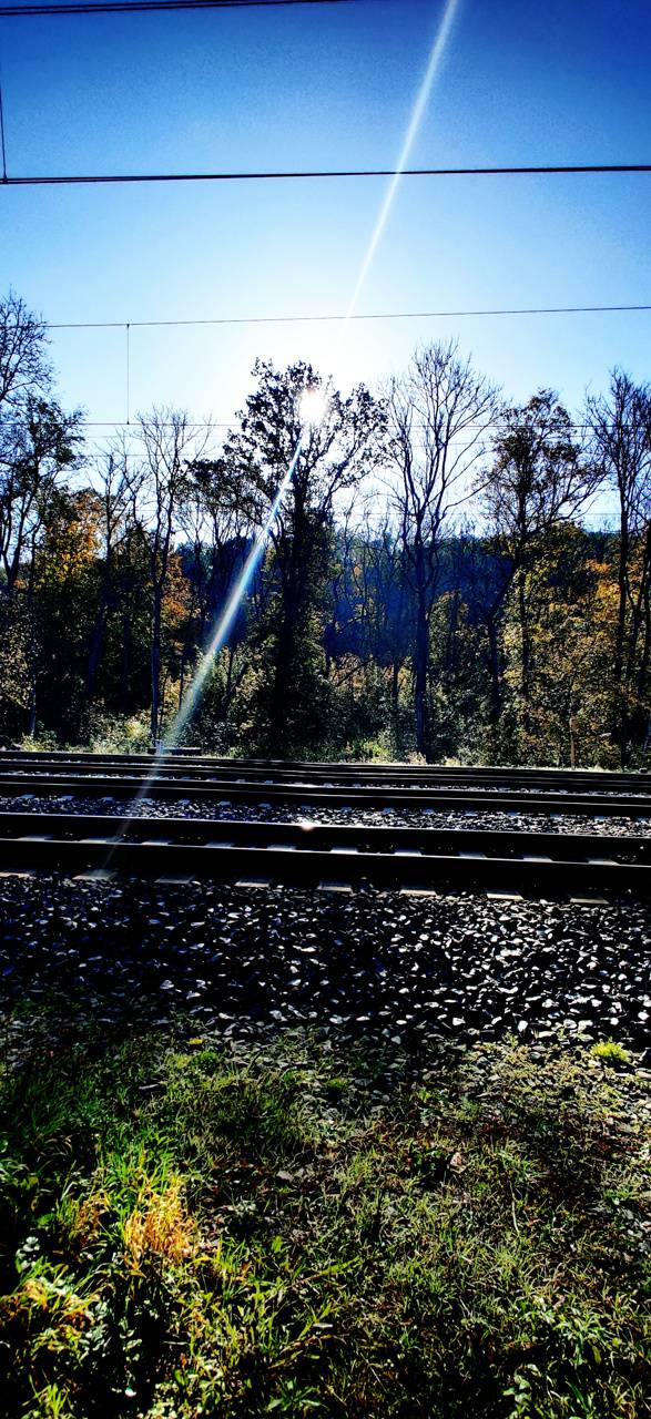 Railway Nature