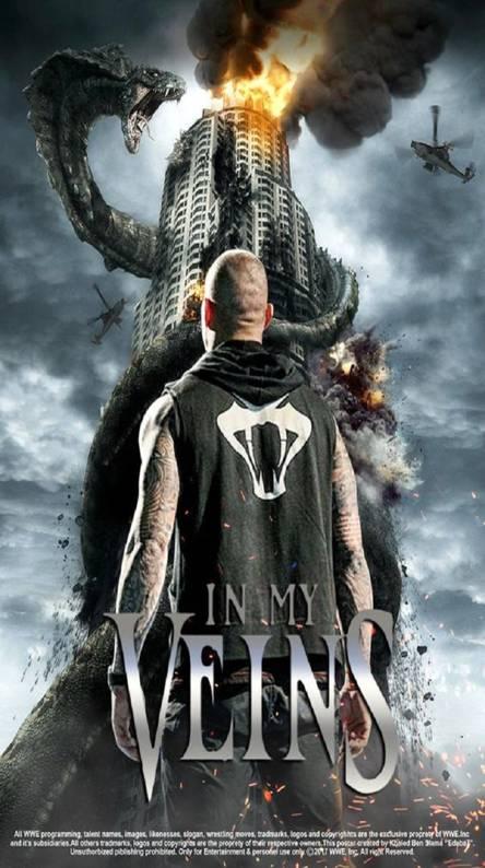 You can download Randy Orton Theme Ringtone