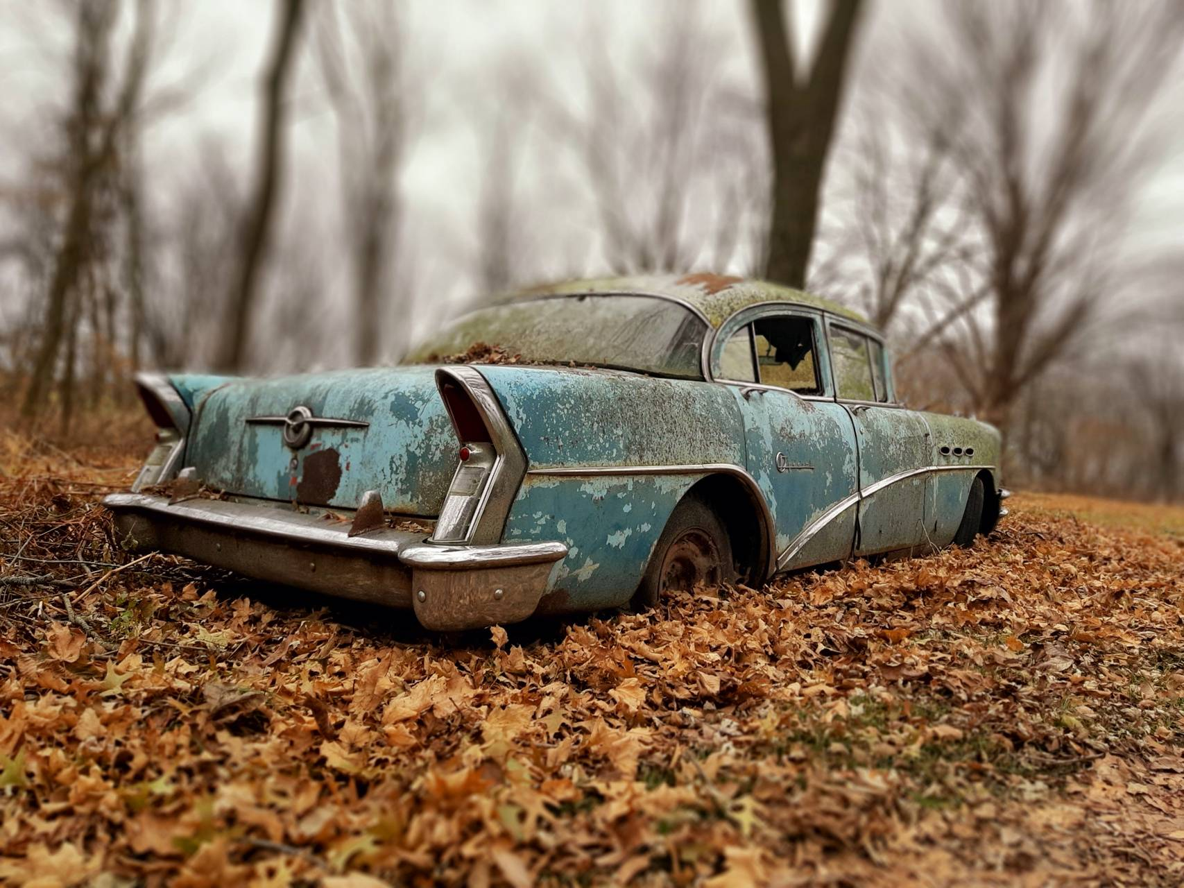 Buick in them leaves
