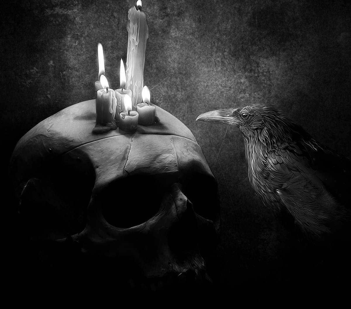 Skull and Crow