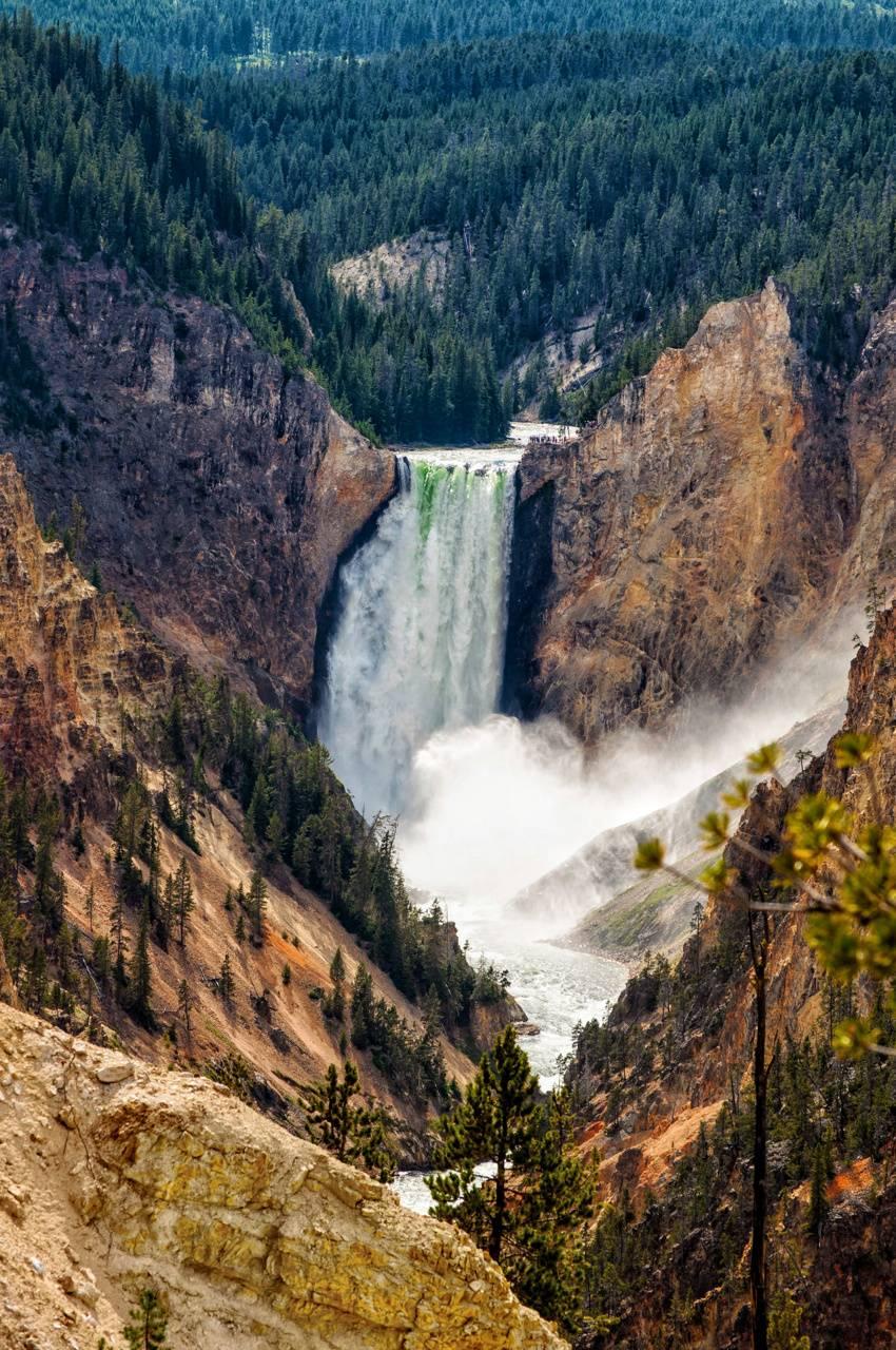 Yellowstone Grand