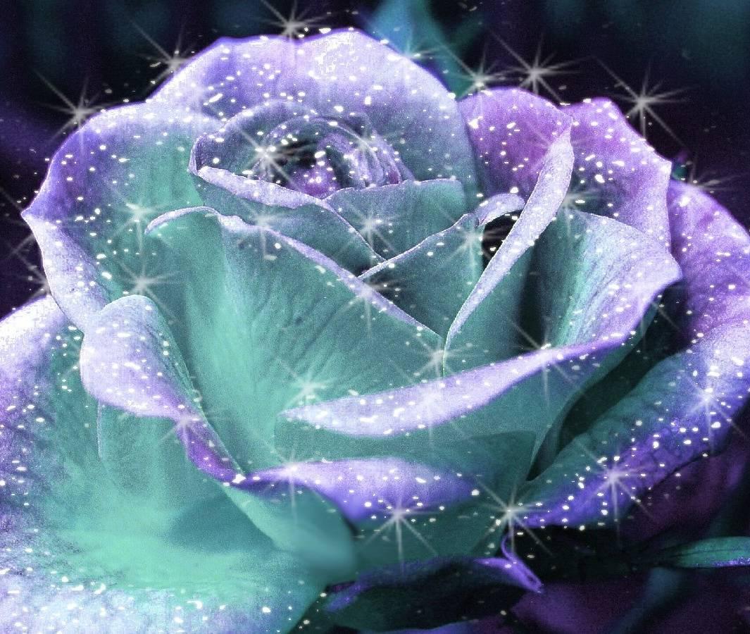 Shiny Flower