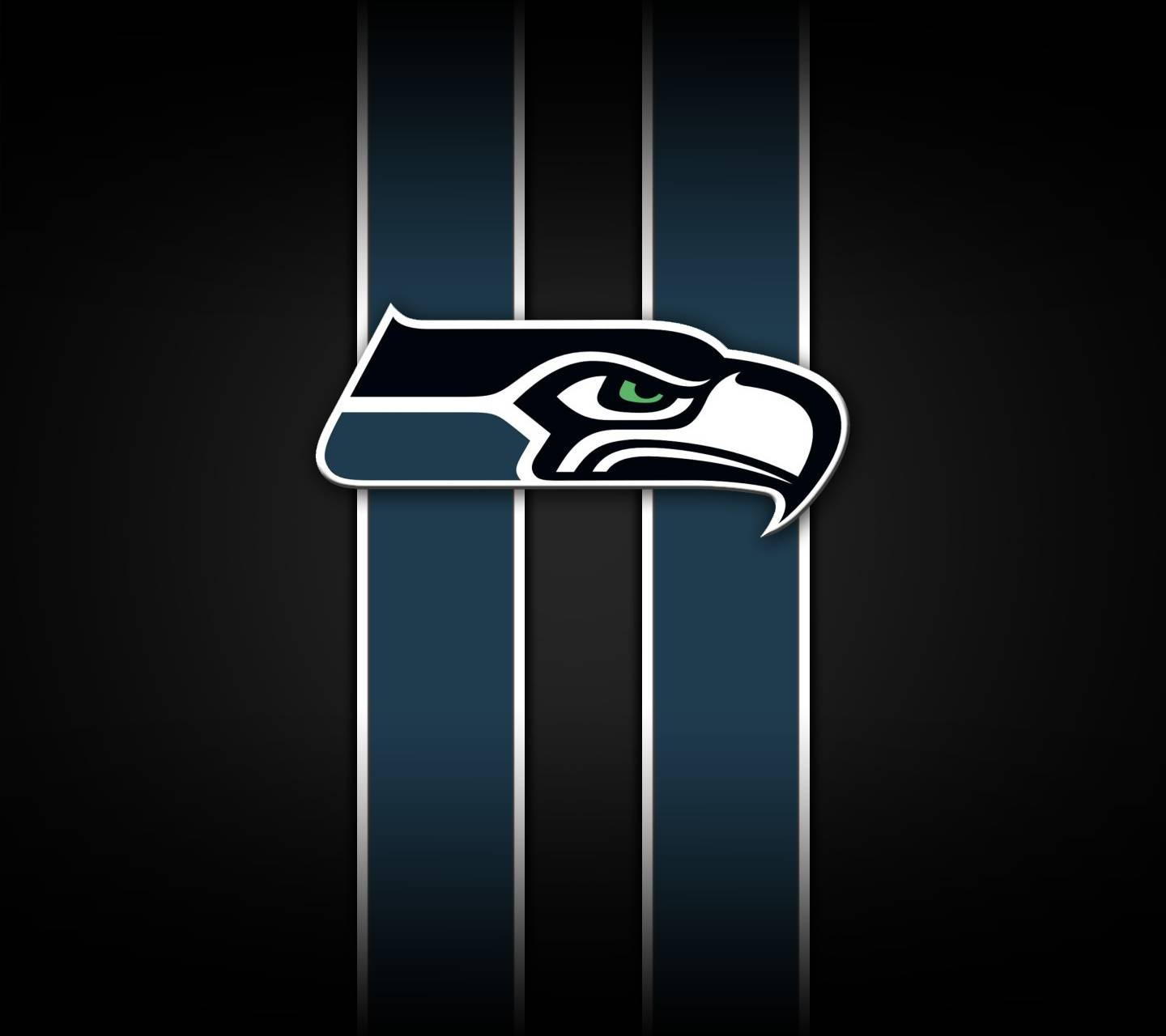 Seattle Seahawks Wallpaper By Aka Jace 95 Free On Zedge