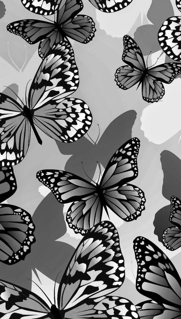 Faded Butterflies