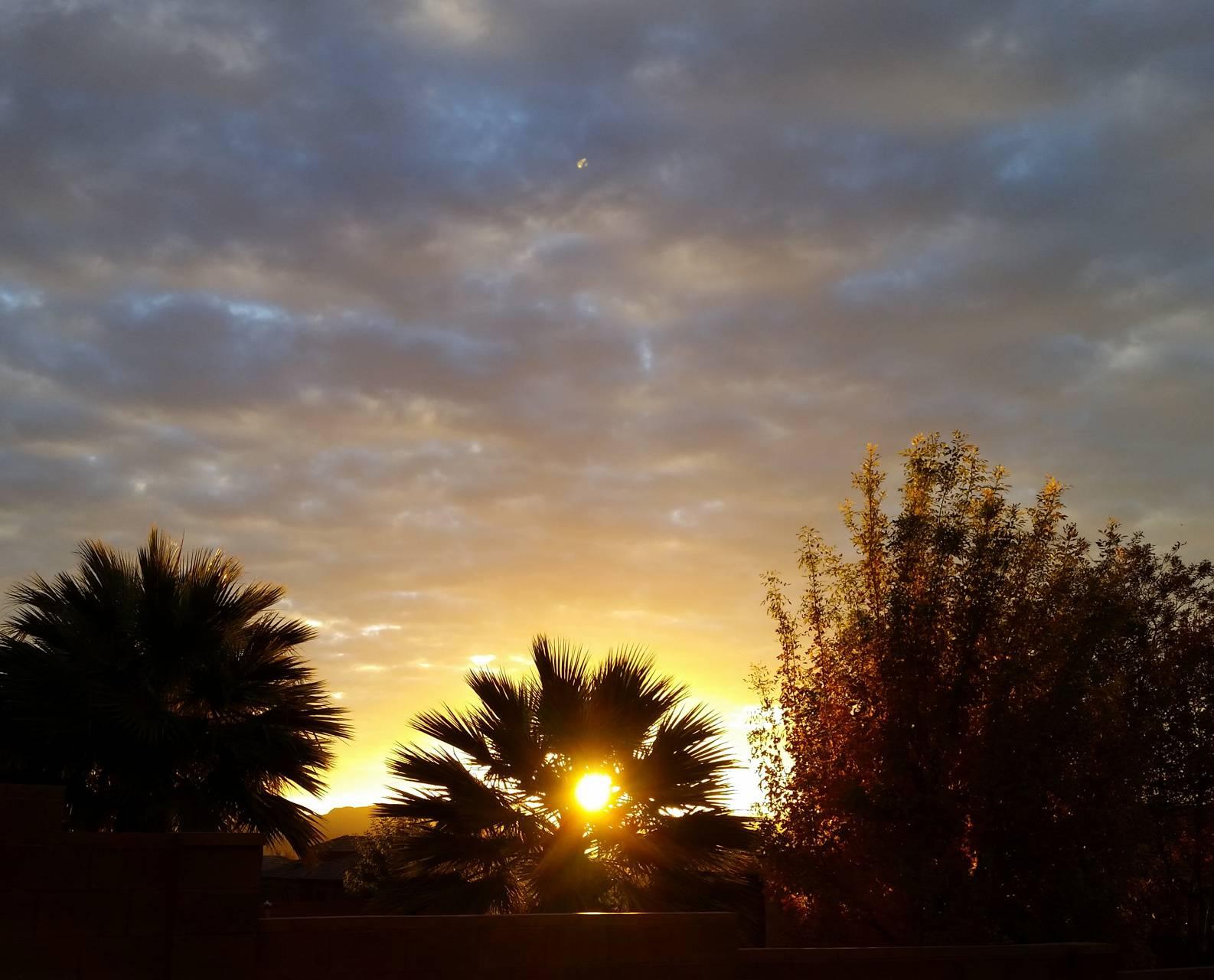 Desert Sunrise 10