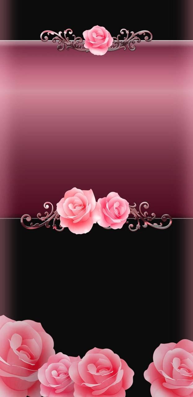 RosesArePink