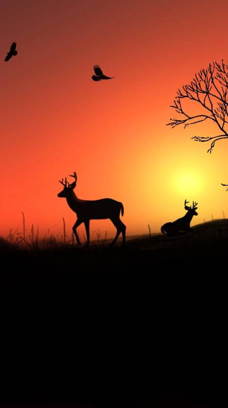 Deer Sounds - - Create & Download Free Sounds Sound Effects Mp3 and more