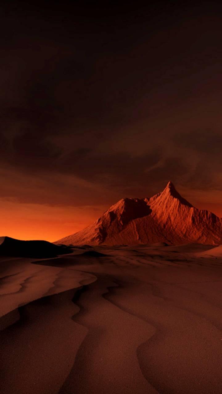 Desert Dreamland