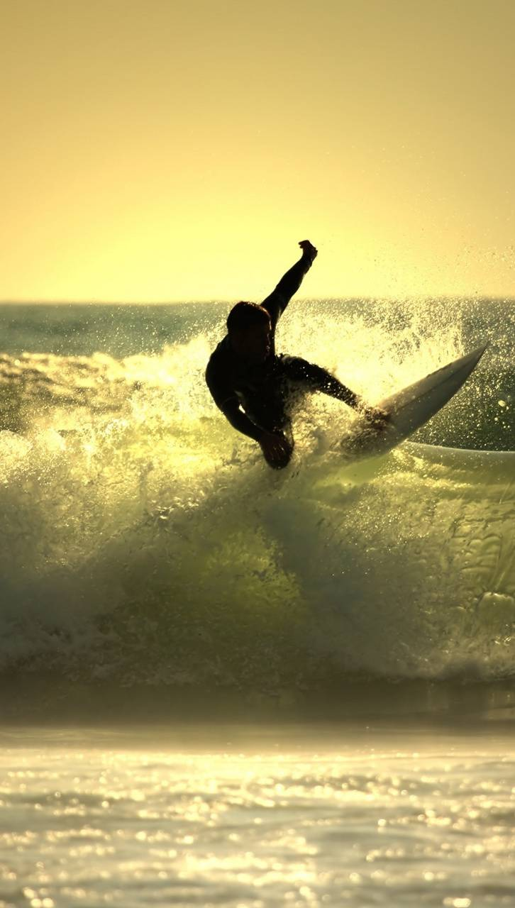 Sunset Surfing Wallpaper By Animagus1 5c Free On Zedge