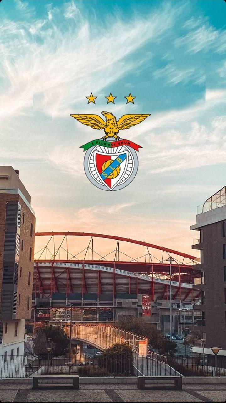 Benfica Luz