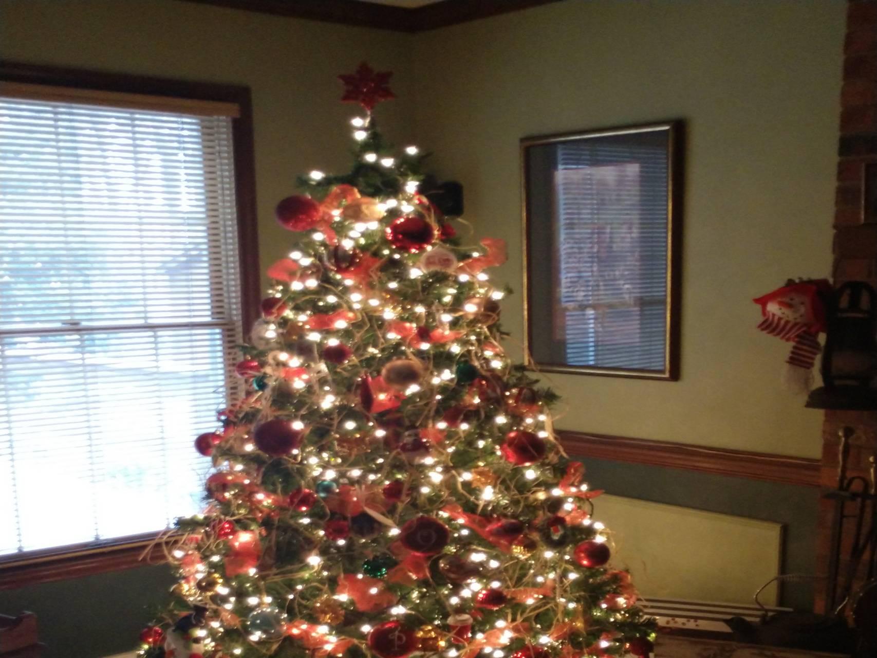 NC Christmas Time