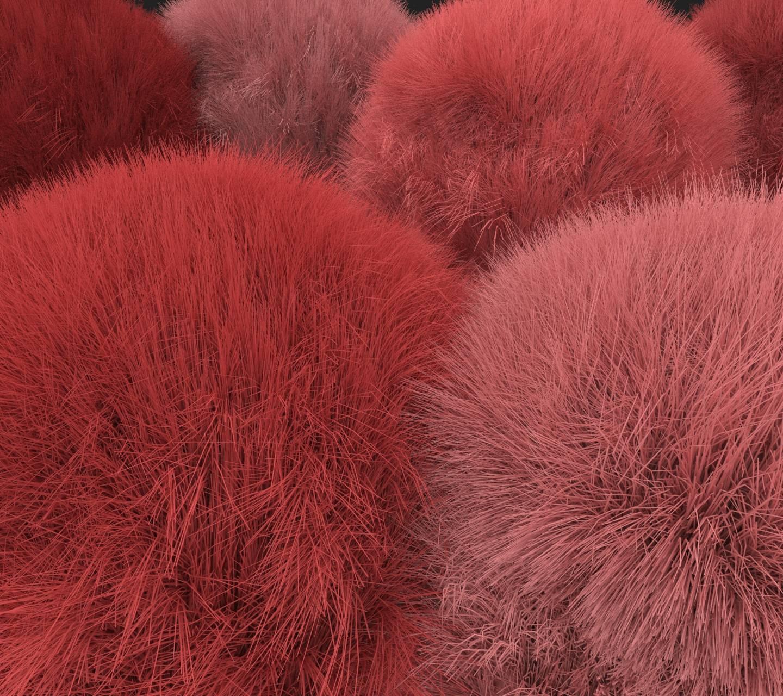 Bolas de pelos rojo