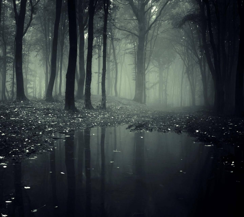 Swamp HD