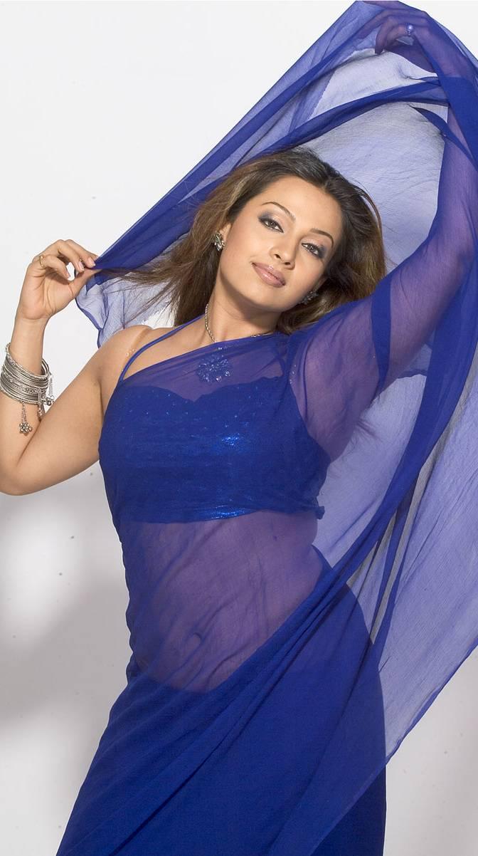 Asha Saini Hot Navel