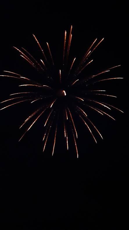 Firework Remnants