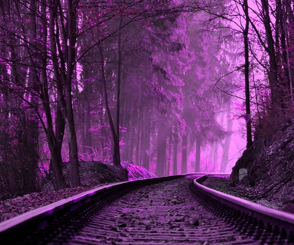purple train tracks