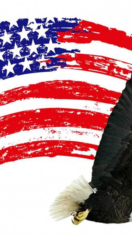 US Flag and   Eagle