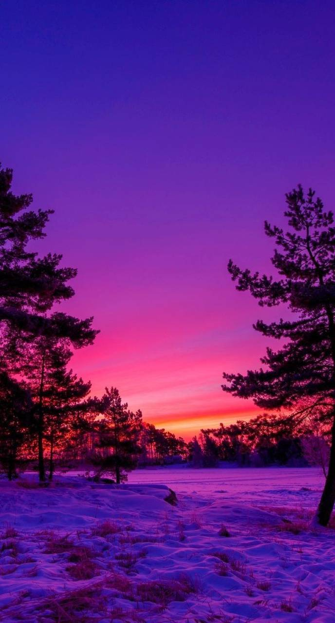 purple paisajes nature wallpapers fondos pantalla backgrounds fondo iphone sunset screen paisaje zedge pretty paisagens kawaii channel sky screensavers landscape
