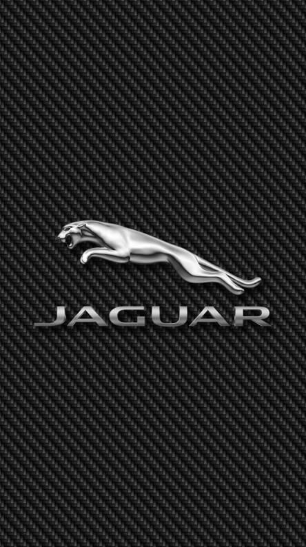 Jaguar Leaper Carbon