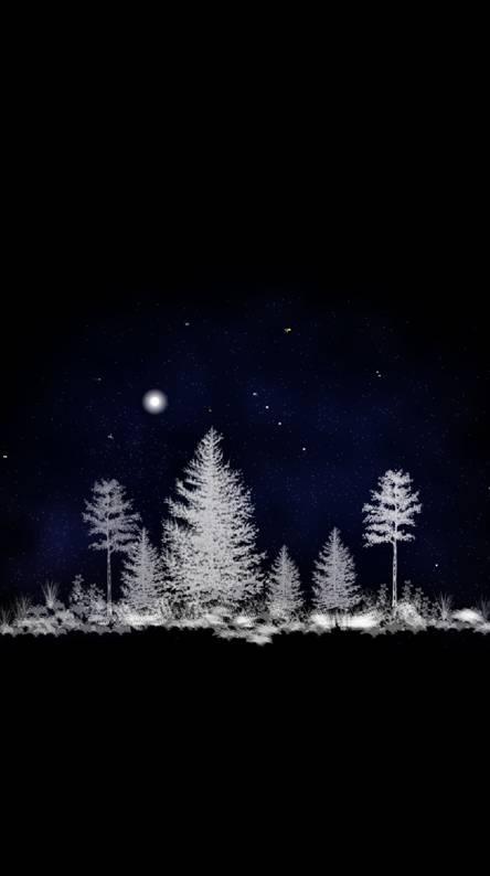 Night Scene 32