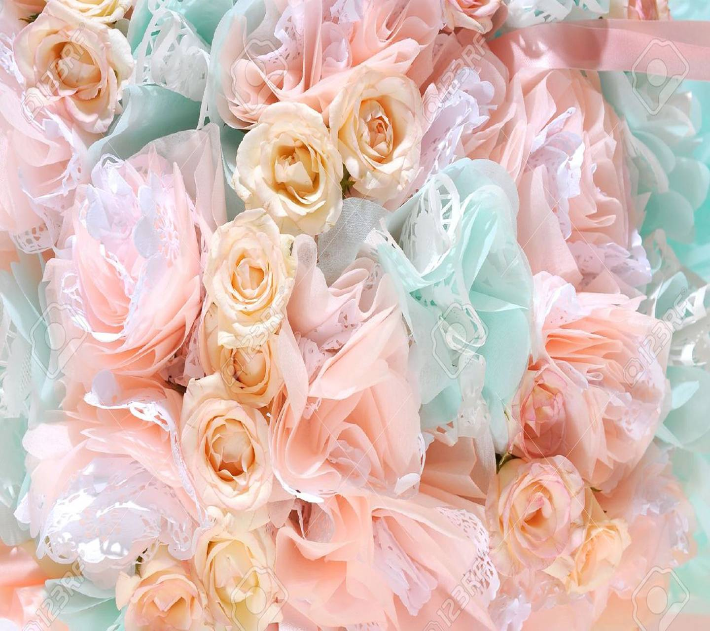 Beautiful Soft Roses