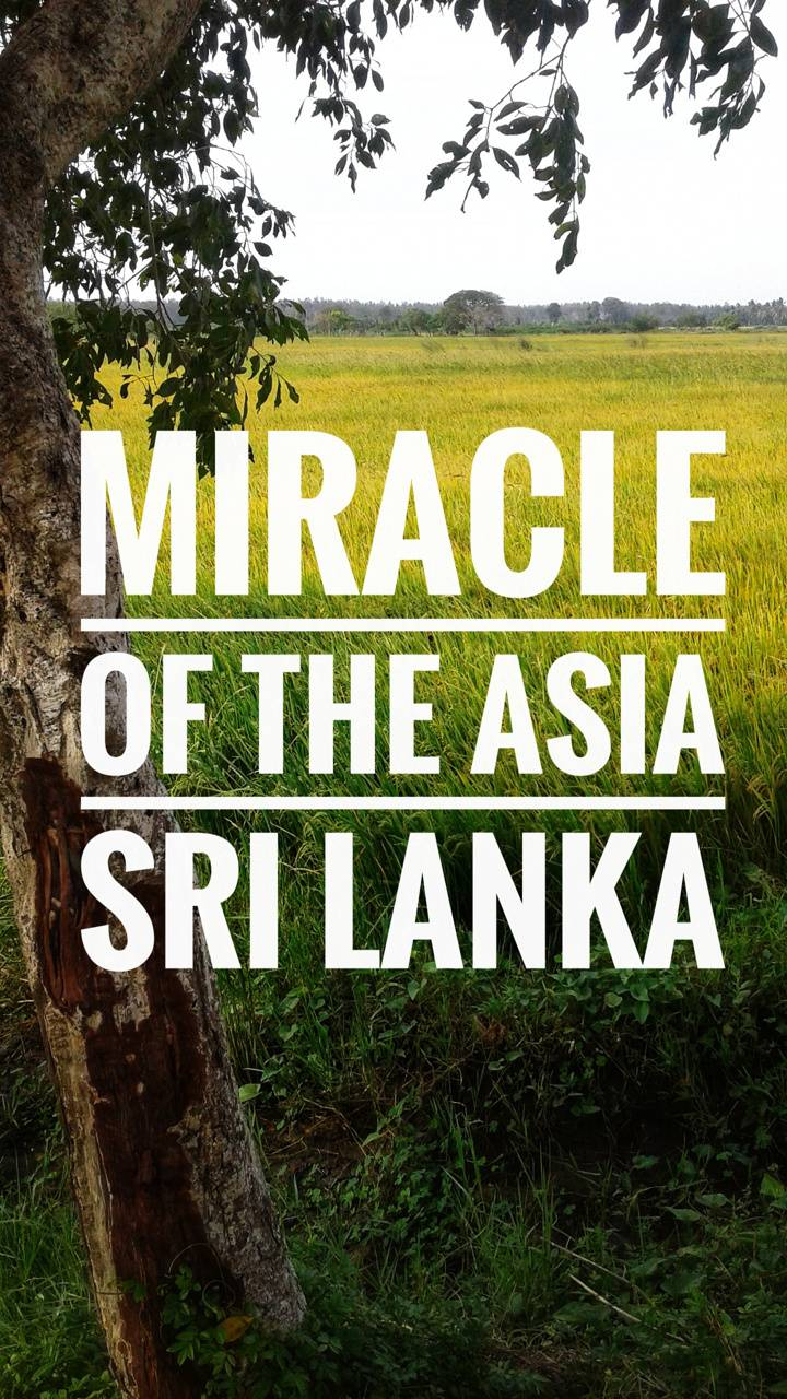 Miracle of the Asia