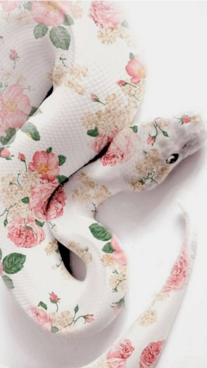 Flower snake skin