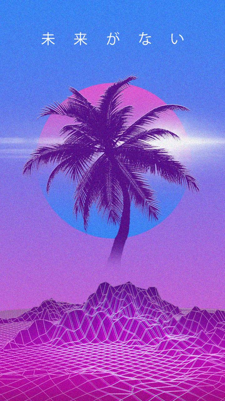 Aesthetic Palm