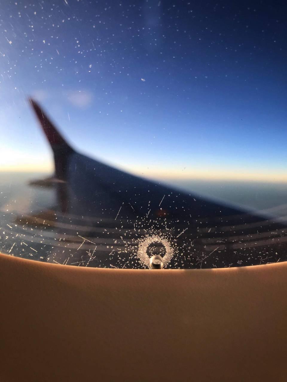 Wing-Plane-Ice