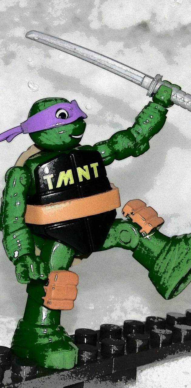 TMNT ninja