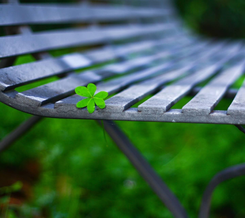 Little Green Leaf
