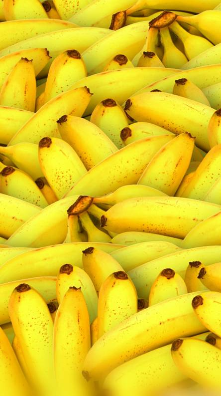 Cat no banana Ringtones and Wallpapers - Free by ZEDGE™
