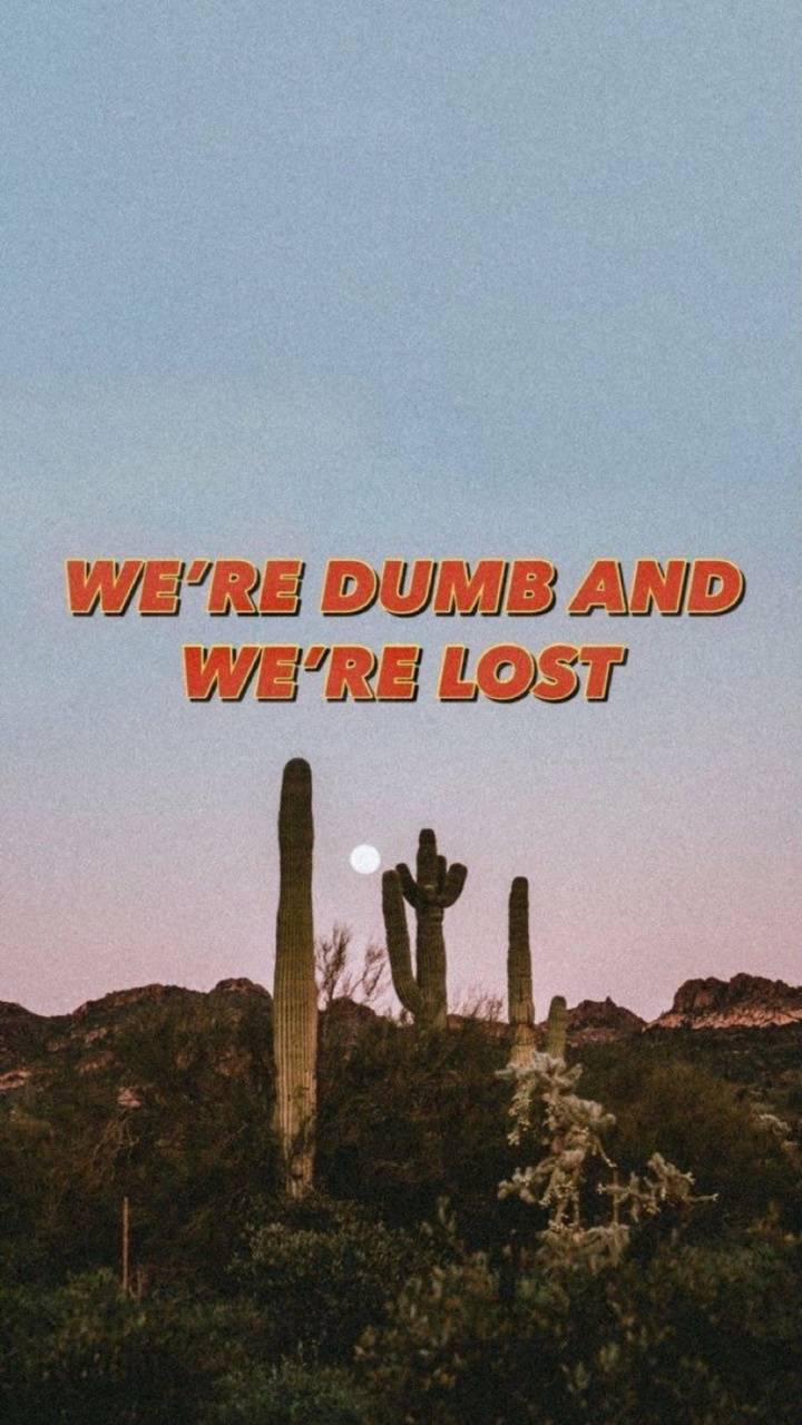Dumb and lost