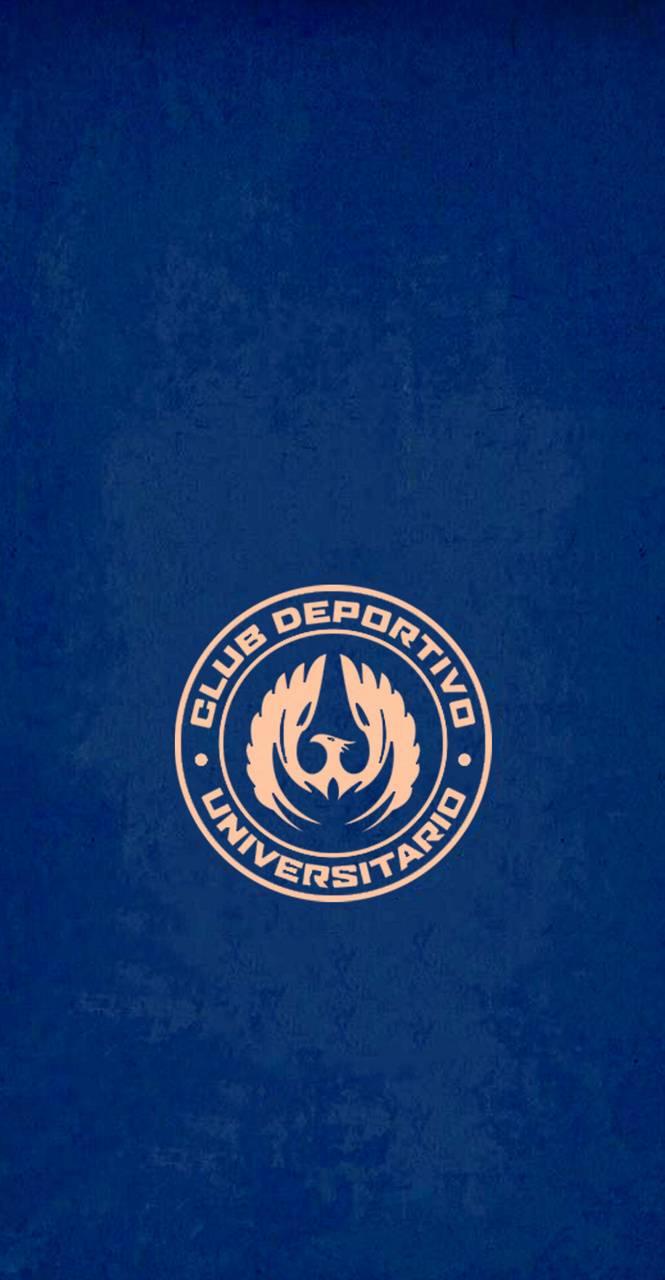 Blue Bronze CDU
