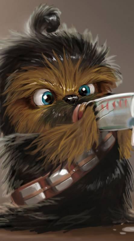 Baby Wookie