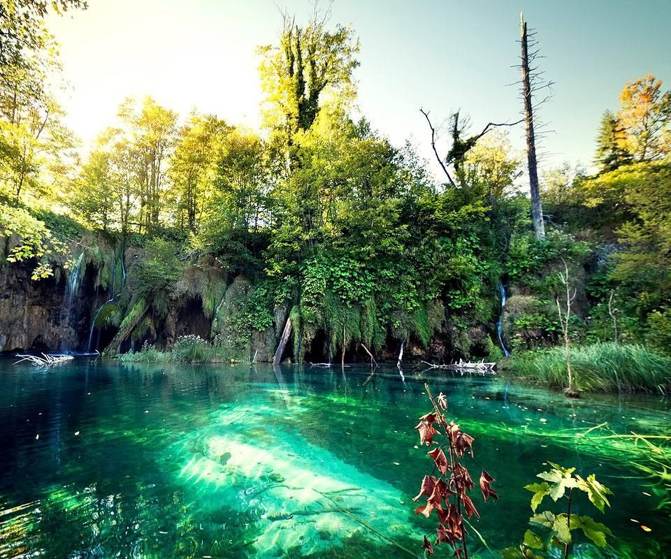 Croatian Nature