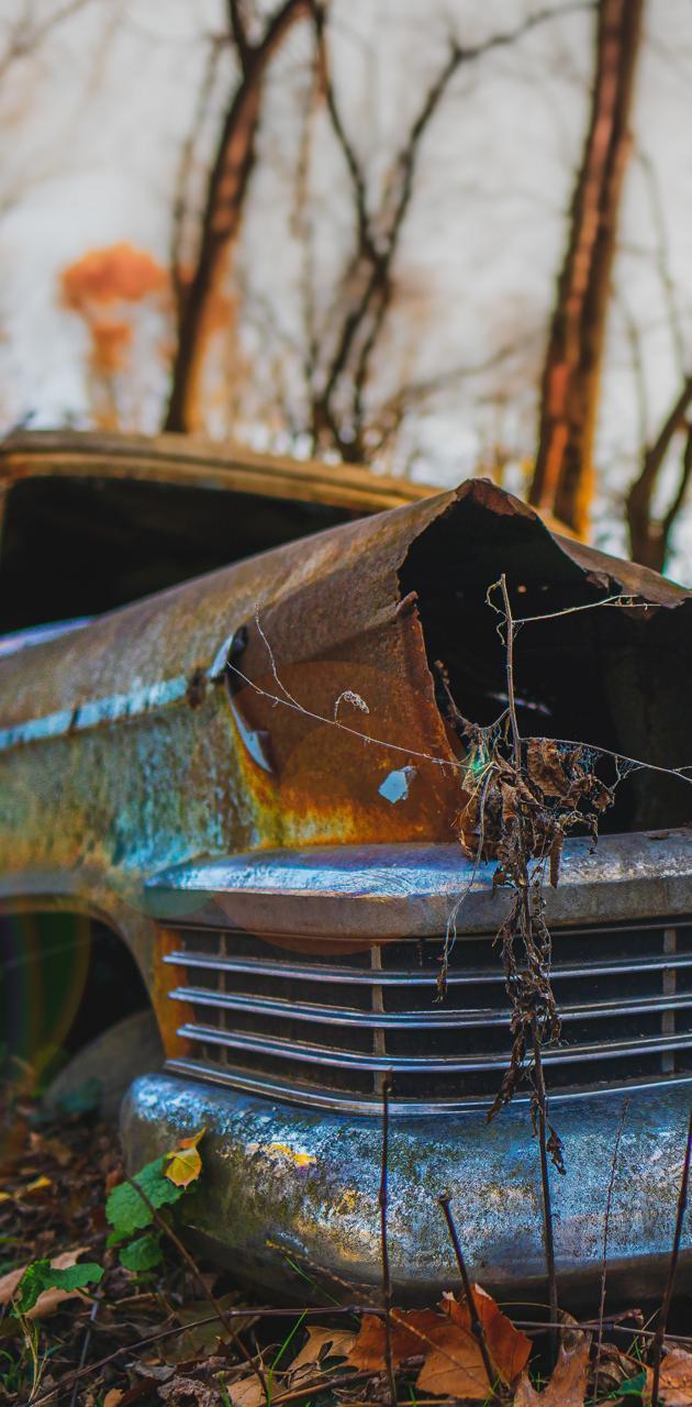 Rusty Car in Nature